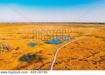 Miory District, Vitebsk Region, Belarus. The Yelnya Swamp. Aerial View Of Yelnya Nature Reserve Land