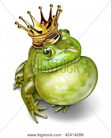 Frog Prince Communication