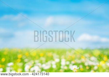 Green Blurred Natural Background. Abstract Summer Defocused Backdrop. Meadow With Grass And Flowers