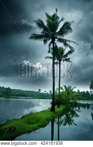 Cloudy Sky Over Beautiful Flood Plain Landscape And Coconut Palm Trees In The Tropical Jungle In The