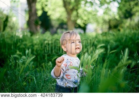 Toddler Sits In The Tall Grass Against The Backdrop Of Trees. Portrait