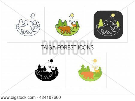 Taiga Forest Icons Set. Boreal Forest Or Coniferous Forest. Living Place For Wild Animals. Winter Fo