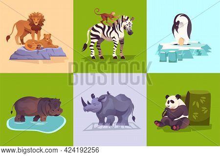 Zoo Wild Animals Concept With Penguin Lion Zebra Rhinoceros Panda Hippo Monkey Colorful Background S