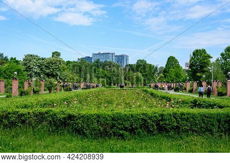 Bucharest, Romania - 23 May 2021: Landscape With Grass And Large Old Green Trees Towards Cloudy Blue