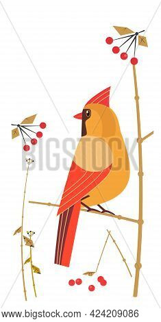 Red Cardinal Female Siting On Tree Branch Vector Icon. Cute Cartoon Wild Backyard Bird Illustration