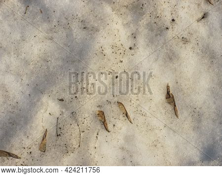 Background: Muddy Spring Melting Snow With Dirt