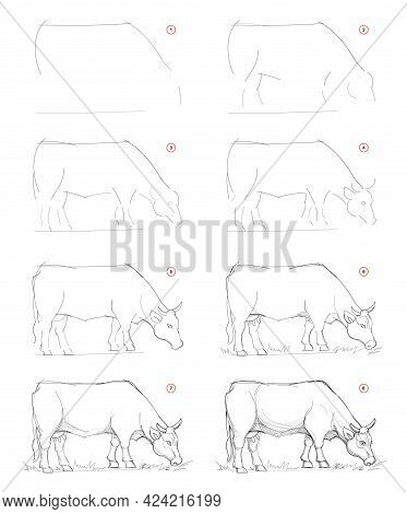 How To Draw Sketch Of Imaginary Breton Cow. Creation Step By Step Pencil Drawing. Education For Arti