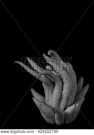 Budhas Hand In Black And White, Citrus Still Life Against Black Background, Viewed From The Side, Wi