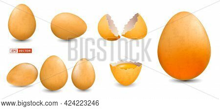 Set Of Realistic Grunge Chicken Eggs Isolated Or Chicken Egg Shell With Dirty Style Or Break Egg She
