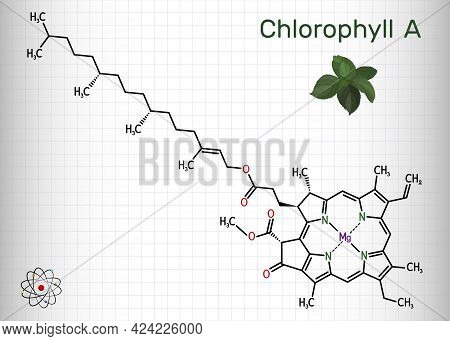 Chlorophyll A, Chlorophyll Molecule. It Is Photosynthetic Pigment Used In Oxygenic Photosynthesis. S