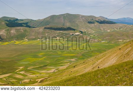 Panoramic View Of Castelluccio Di Norcia During The Flowering Of Lentils In The National Park Of Mon