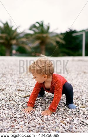 Little Child Squats On A Pebble Beach Against A Background Of Palm Trees