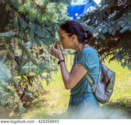 Nice Middle-ages Woman Is Sniffing Outdoors A Branch Of A Canadian Blue Spruce. Profile Portrait. Si