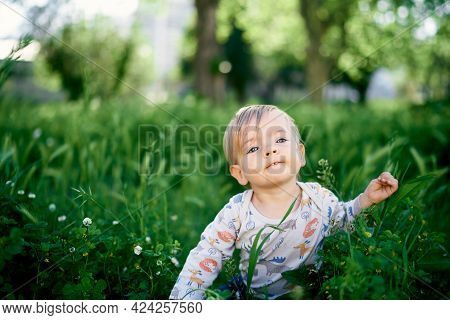 Kid Sits In The Tall Grass Among The Wildflowers