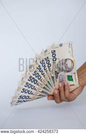 Female Hand Holding Ukrainian Money. Ukrainian Banknotes.