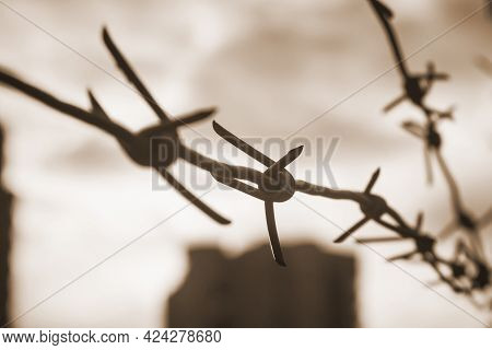 Old Rusty Barbed Wire. Metal Barbed Wire Fence Close-up With Blurred Background.