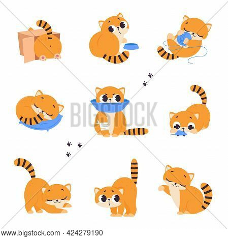 Cute Red Kitten Doing Different Activities Set, Adorable Pet Animal Playing, Sleeping And Eating Car