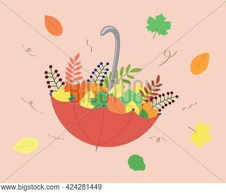 Autumn Fall Leaves In Umbrella. Maple Leaf Fall. Vector Colorfull Illustration.