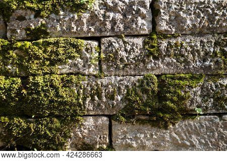 Old White Stone Wall Overgrown With Green Moss Texture For Background