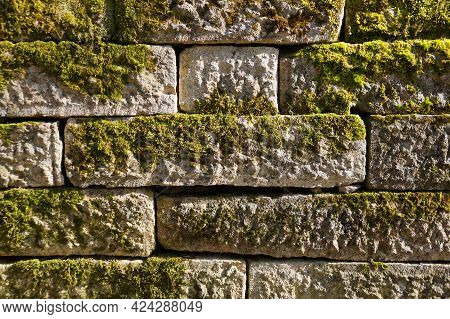 Old White Stone Wall Overgrown With Green Moss Texture For Background Close-up