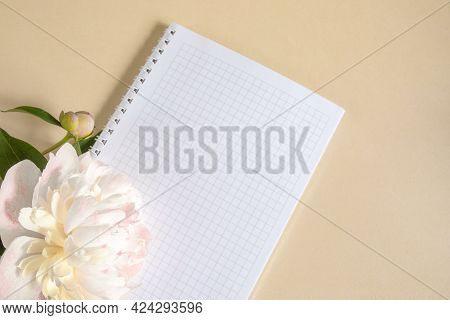 A Notebook In A Cage On A Spring And A Large Beige Peony Bud On A Beige Background. Copy Space, Flat