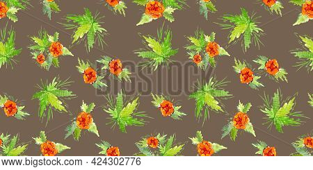 Multicolor Watercolor Branch Five Orange Buttercup Flower On Brown Background. Doodle And Scribble.
