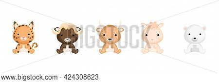 Cute Sitting Baby Animals In Cartoon Style. Collection Woodland Animals Characters For Kids Cards, B