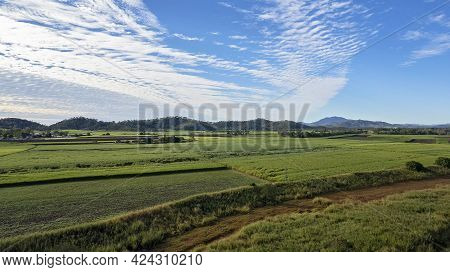 Aerial Of Agricultural Sugarcane Fields Under A Cloudy Blue Sky