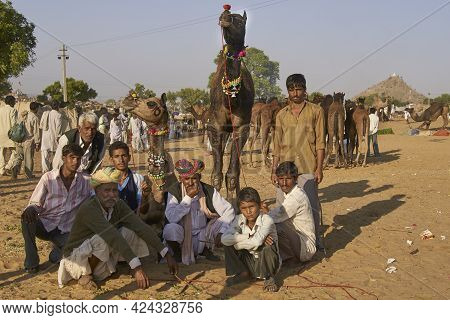 Pushkar, Rajasthan, India - November 6, 2008: Family Group With Camels At The Annual Pushkar Fair In