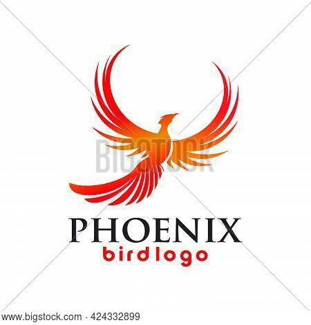 Phoenix Wings Bird Logo Exclusive Design Inspiration