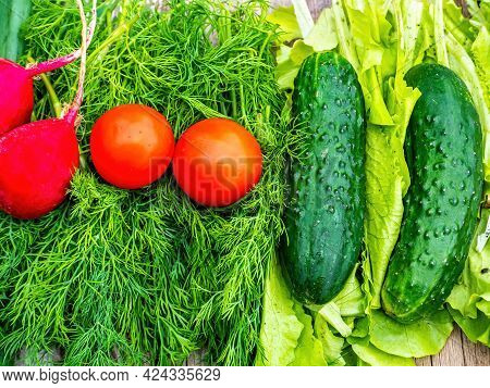 Cucumbers With Tomatoes And Radishes On Vegetable Salad Greens. Green Cucumber. Red Tomato. Red Radi