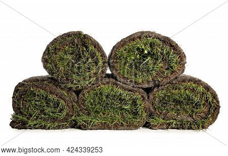 Rolls Of Grass Sod On White Background