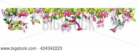Divider With Fuchsia Flowers And Hummingbird Bird. Decorative Frame From Tropical Design. Ornament O