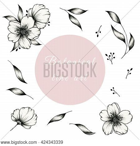Hand Drawn Ink Botanical Line Art Collection Isolated On White, Cute And Simple Floral Elements Grea