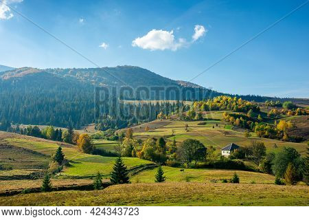 Mountainous Rural Landscape In Autumn. Fields And Trees On Hills. Carpathian Countryside In Evening
