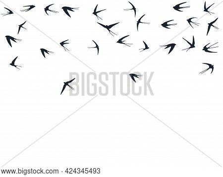 Flying Swallow Birds Silhouettes Vector Illustration. Nomadic Martlets Swarm Isolated On White. Alar