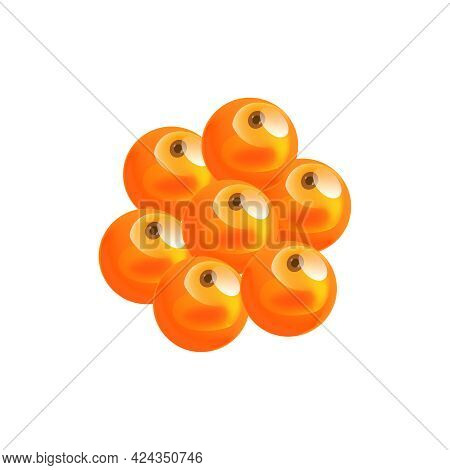 Life Cycle Flat Icon With Orange Salmon Eggs Vector Illustration