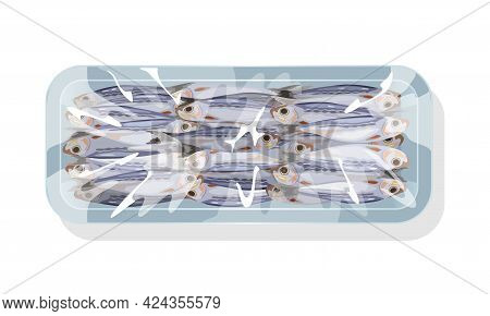 Cartoon Set Of Small Fish Sprat Frozen In Plastic Tray, Fresh Marine Sardine. Vector Atlantic Ocean