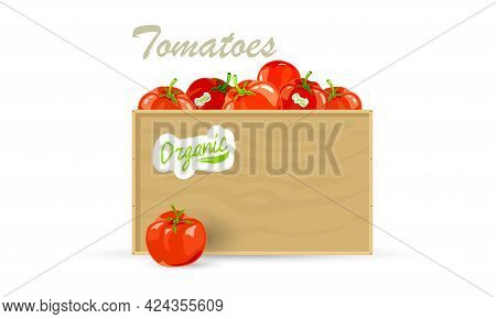 Cartoon Of Organic Tomato Vegetable For Export. Vector Healthy Eating, Food Shopping, Grocery, Raw P