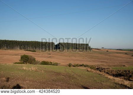 Rural Landscape In Southern Brazil.