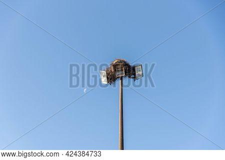 Lighting Tower With Birds Nest On Blue Background. Electric Power Pole. Public Lighting Infrastructu