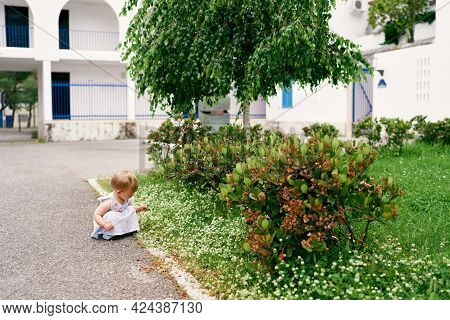 Little Girl Squatted Down Near The Wildflowers In The Yard Of The House
