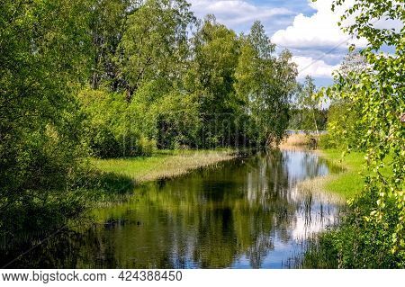 Summer Landscape. Lake In The Forest. Nature Conservation Concept. Summer Background. High Quality P