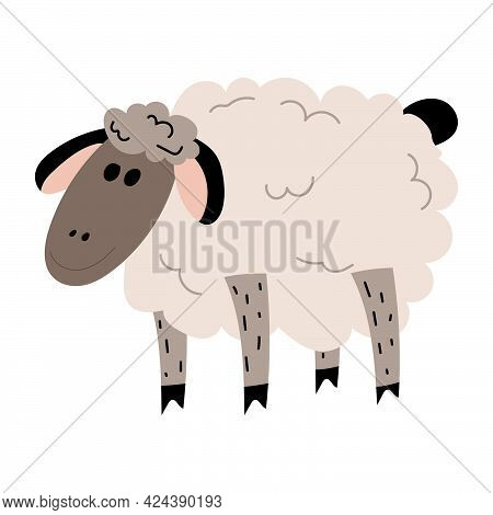 Sheep Standing Side View. Cute Lamb .vector