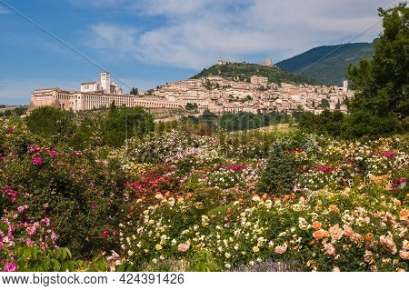 Romantic And Panoramic View Of Assisi Medieval Town Of Peace From Rose Garden In Umbria, Italy, Euro