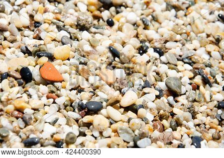 Sea Stones Of Various Sizes Cover The Seaside. Selective Focus Multi-colored Pebbles On The Seashore