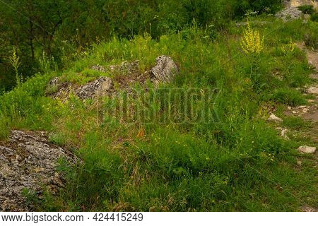 Beautiful Spring Meadow. Sunny Clear Sky With Sunlight In Mountains.