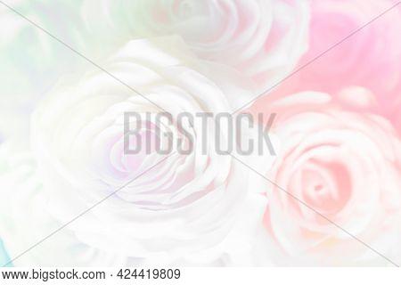 Pink rose patterned design background