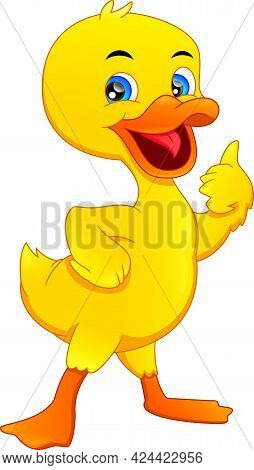 Cute Little Duck Thumbs Up On White Background