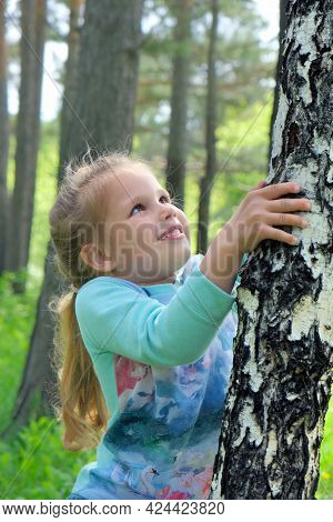 Little Girl Touch Of Bark Tree And Investigating Details Of Nature. Outdoor Kids Activity And Learni